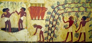 vinho-egipto-ii